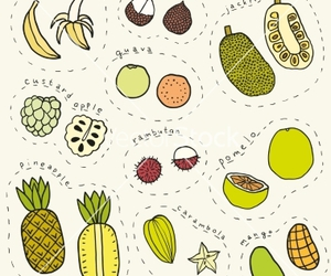 doodle, drawing, and fruit image