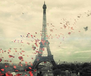 france, paris, and beautiful places image