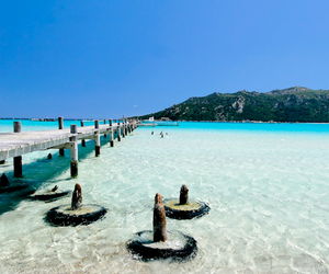 beach, Corsica, and france image