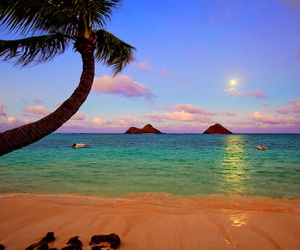 beach, landscapes, and photography image