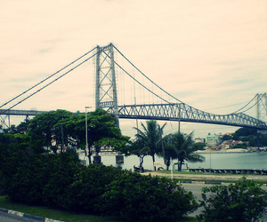 bridge, city, and florianopolis image
