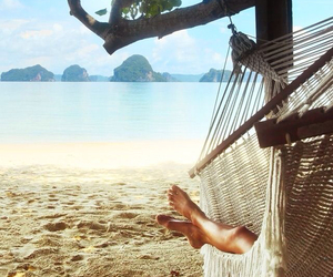 beach, hammock, and photography image