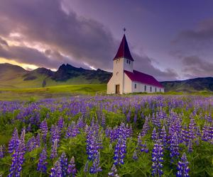 church, flowers, and nature image
