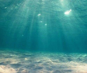 iphone, under water, and summer image