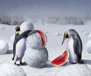 penguin, watermelon, and snow image