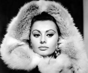 black and white and sophia loren image