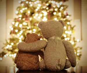 christmas, bear, and light image