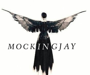 mockingjay, hunger games, and katniss everdeen image