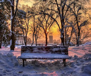 sun, bench, and winter image