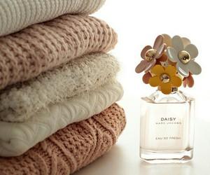 fashion, sweater, and daisy image