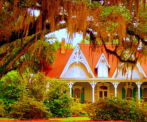 architecture, bayou, and country image
