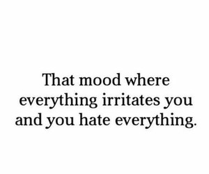 mood, hate, and quotes image