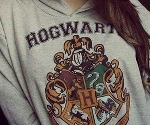gryffindor, hoodie, and ravenclaw image