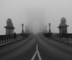black and white, budapest, and hungary image