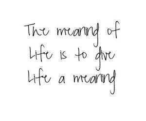 quote, life, and meaning image