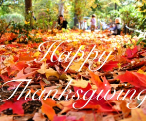 fall, thanksgiving, and give thanks image