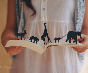 animals, book, and cute image