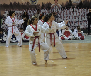 martial arts, taekwondo, and moo duk kwan image