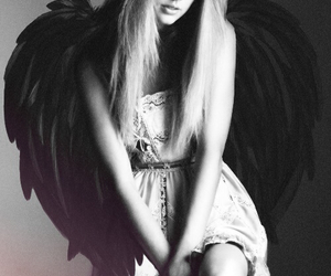 angel, black and white, and wings image