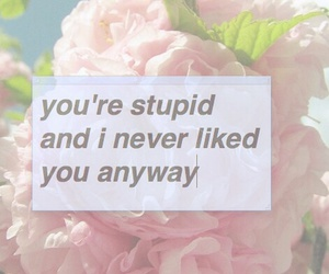 flowers, quotes, and stupid image