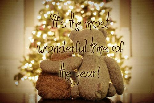 christmas, bear, and light image