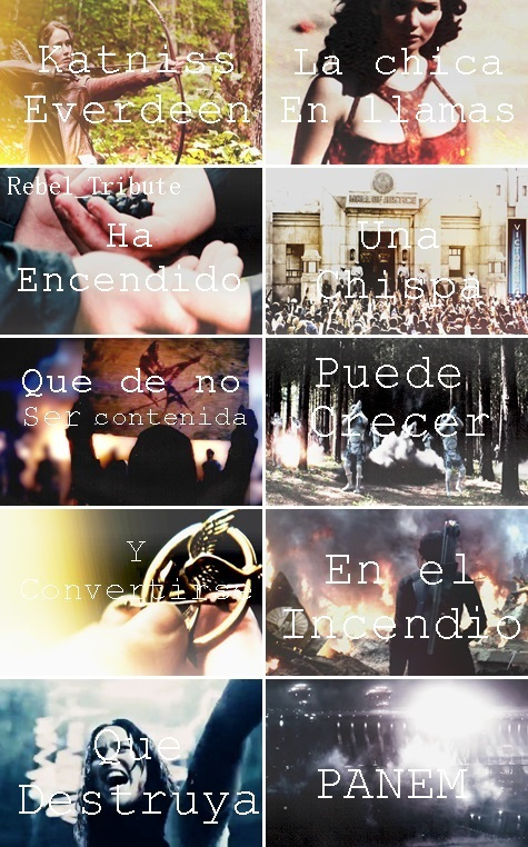 rebelion, katniss everdeen, and tributo image