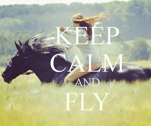 horses and keep calm image