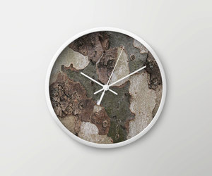 clock, nature, and tree image