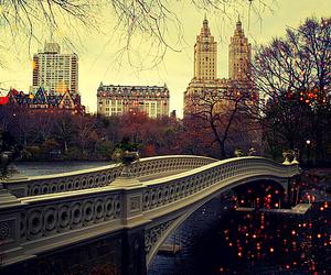 city, bridge, and light image