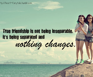 friends, friendship, and quote image