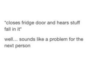 door, fridge, and lol image