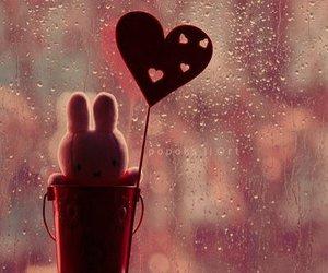 cute, love, and rain image