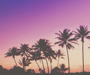beautiful, color, and paradise image