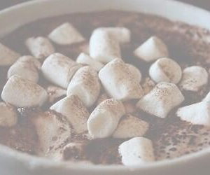 hot chocolate, header, and marshmallow image