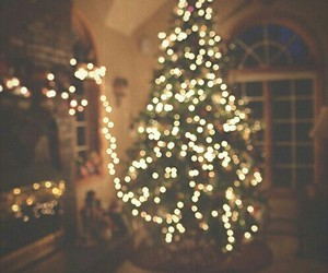 christmas, light, and tree image