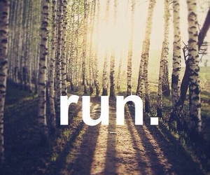 run, forest, and fitness image