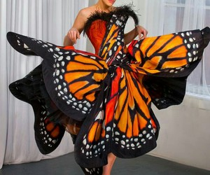 monarch butterfly dress and fashion&beauty image