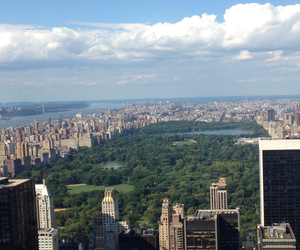 Central Park, new york, and summer image