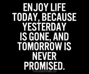 life, enjoy, and today image