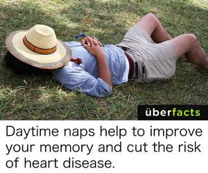 daytime, healthy, and naps image