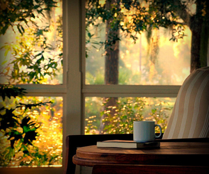 book, window, and coffee image