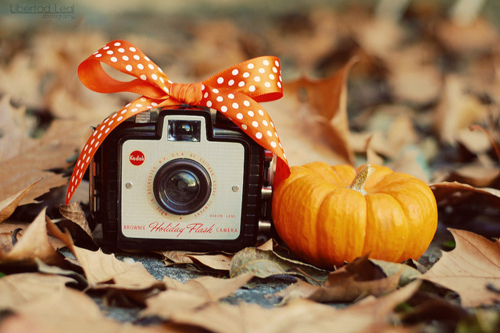 fall image with camera & small pumpkin