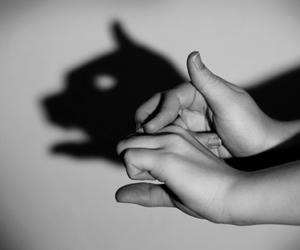 b&w, hands, and shadow image