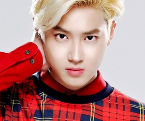 beauty, exo, and suho image