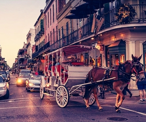 new orleans and nola image