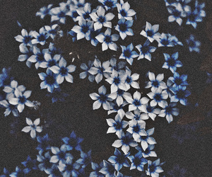 flowers, blue, and grunge image