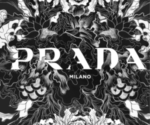 Prada, fashion, and milan image