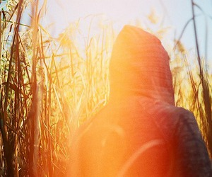 boy, colour, and grass image