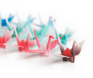 colorful, origami, and photography image