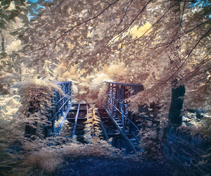 bridges, infrared, and photography image